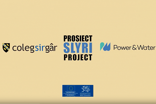 Prosiectslyri Project Animation (English)